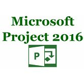 Microsoft Project 2016 Win English Medialess RETAIL